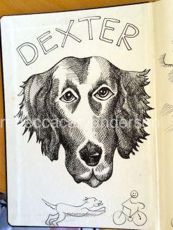dexterartIMG_5739