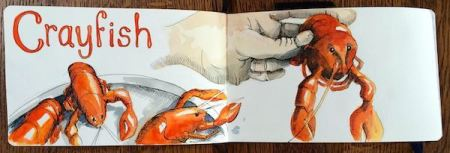 crayfish 2015IMG_6213