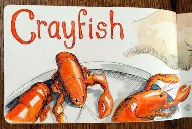 crayfish 2015IMG_6214