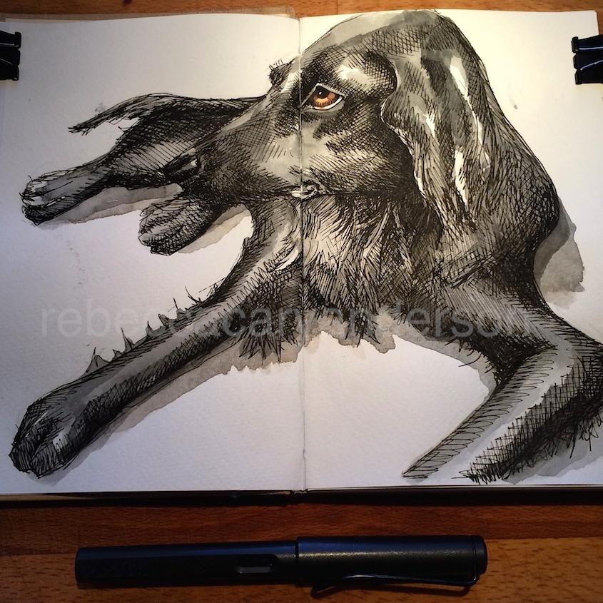dogdaysofdecemberIMG_7388