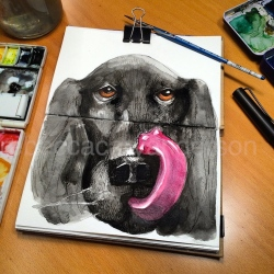 dogdaysofdecemberIMG_7489