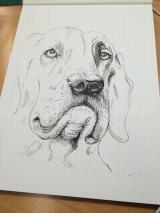 dogdaysofdecemberIMG_7539