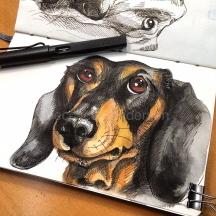 dogs of decemberIMG_7594