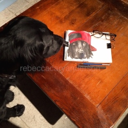 dogs of decemberIMG_7649