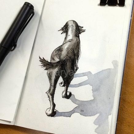dogs of decemberIMG_7718